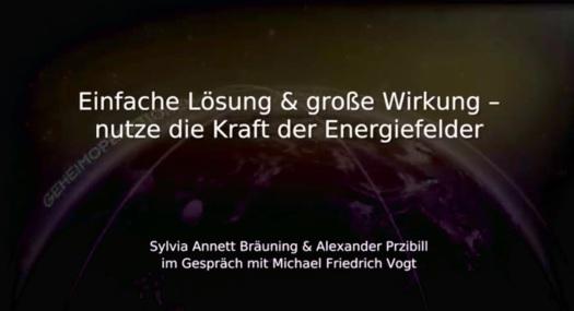 Sylvia Bräuning, Alexander Przibill: Nutze die Kraft der Energiefelder